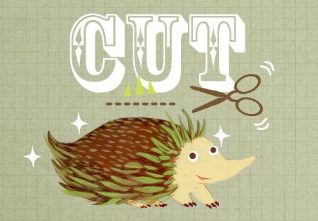 160615-cut